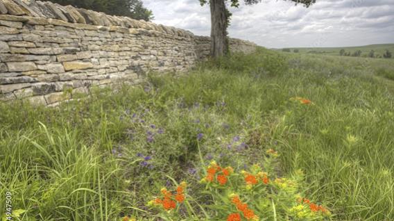 Explore The Flint Hills