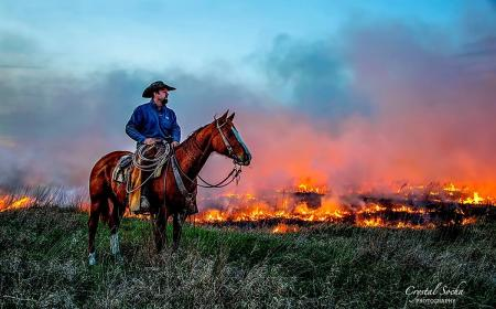 Burning at the Clover Cliff Ranch April 2016