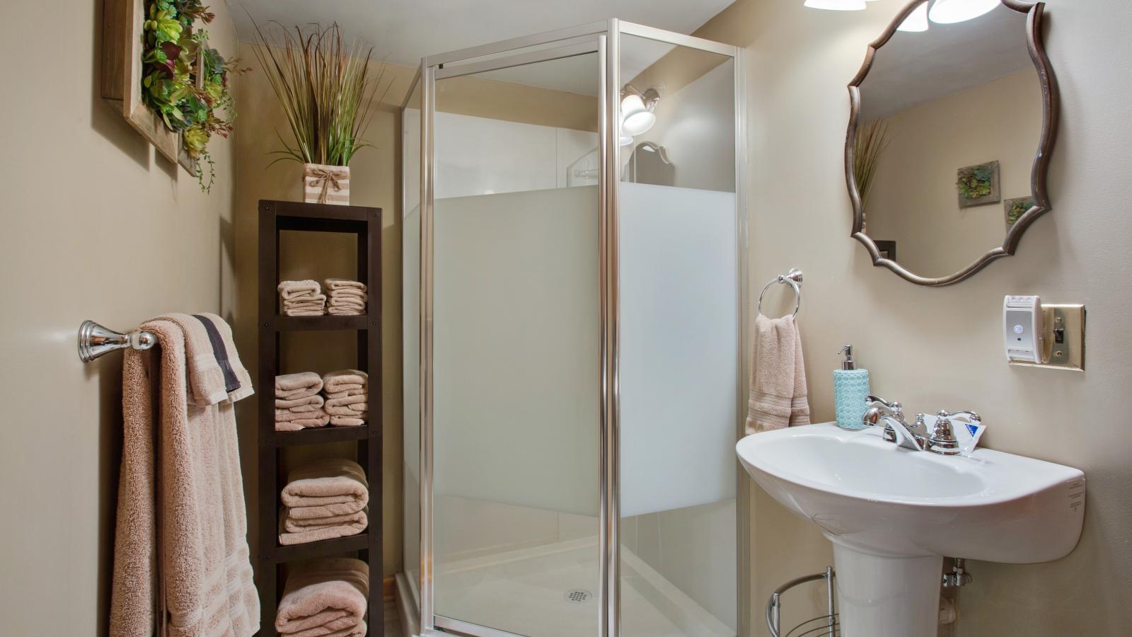 Bathroom shower and sink